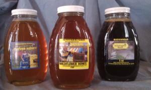 Hummingbird Ranch Honey